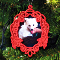 Photo Frame Ornament_image