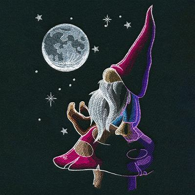 Moon Gazing Gnome_image