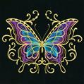 Springtime Gilded Mirage Butterfly_image