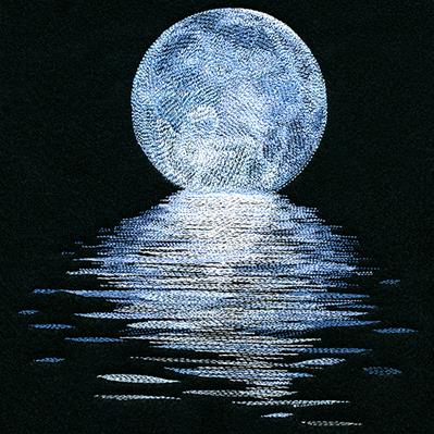 Moonlit Reflections_image
