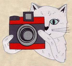 Cats Love Cameras_image