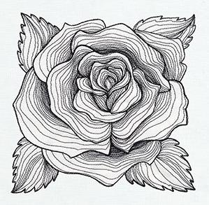 Engraved Rose_image