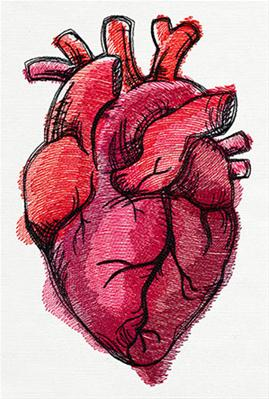 Painted Anatomical Heart_image