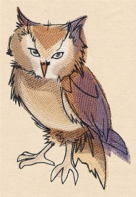 Painted Owl_image