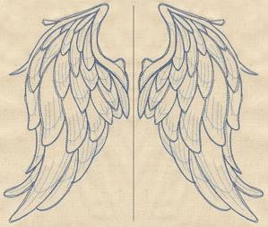 Wings from Above (Wing Pair)_image