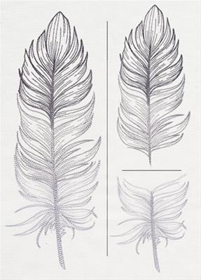 Light as a Feather (Split)_image