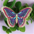 Enchanting Butterfly (Freestanding Organza)_image